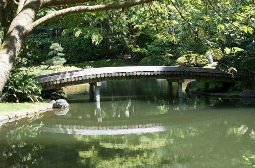 bridge wood bridge peaceful spot