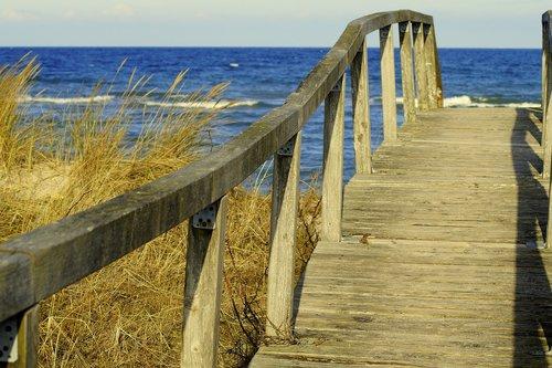 bridge  away  wood