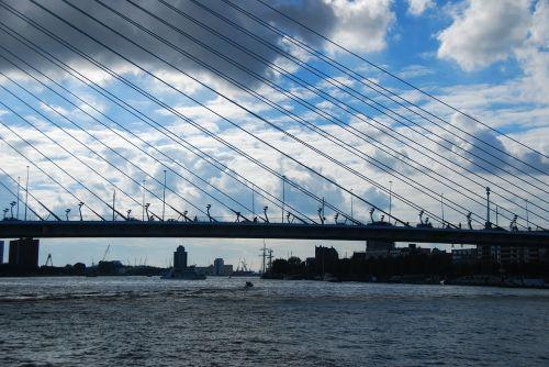 bridge rotterdam river crossing