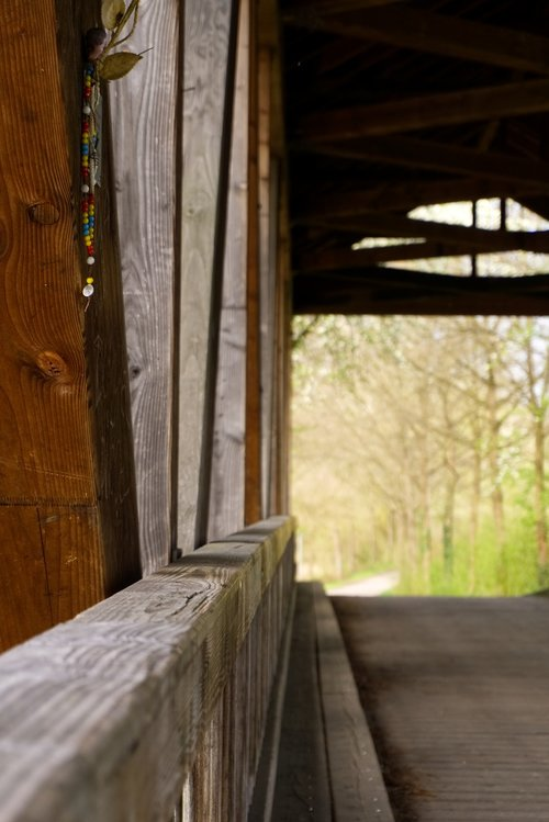 bridge  wooden bridge  the old rhine bridge