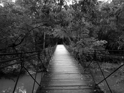 bridge swinging wood