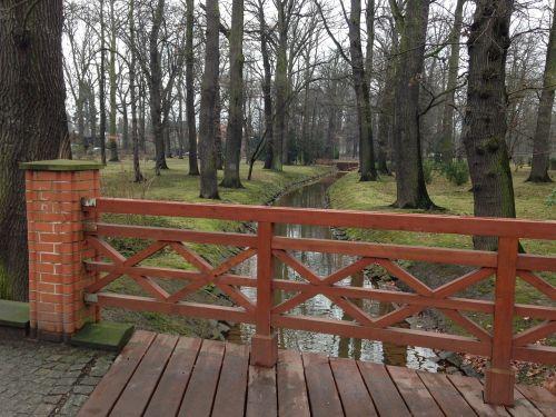 bridge park trees