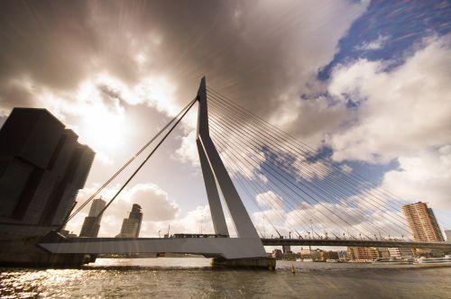 bridge rotterdam erasmus