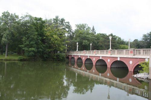 bridge water trees