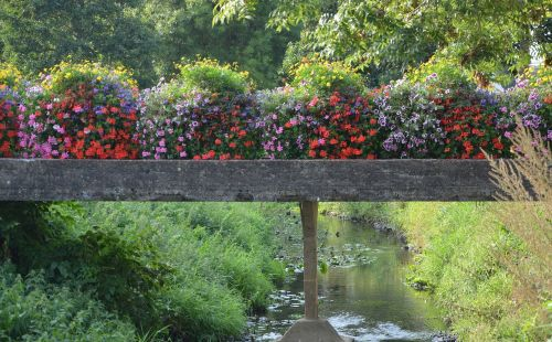 bridge fleuri river the guyoult dol de bretagne