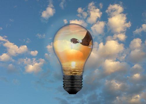Bright Idea - Soaring Eagle