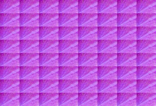Bright Pink Slanted Pattern