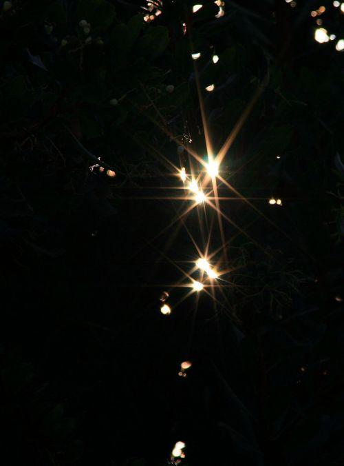 Bright Star Effect