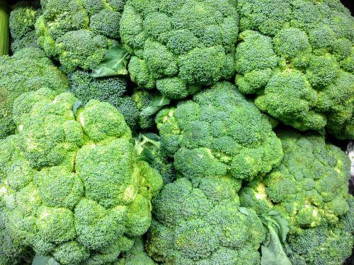 broccoli produce fresh