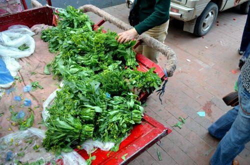maistas, daržovės, rabe, brokoliai & nbsp, rabe, žalumos, turgus, ūkininkų & nbsp, rinka, šviežias, brokoliai rabe