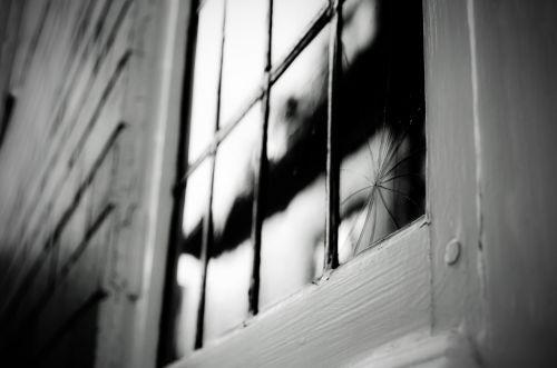 Broken Old Window