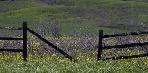 Broken Wood Rail Fence
