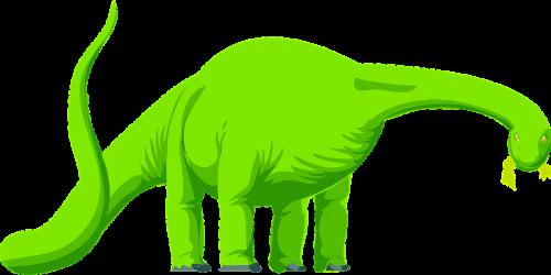 brontosaurus dinosaur animal