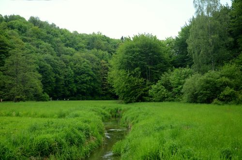 brook river the brook