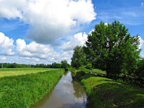 brook nature landscape