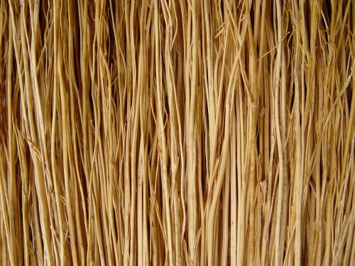 broom,sticks,macro,background,texture,free photos,free images,royalty free