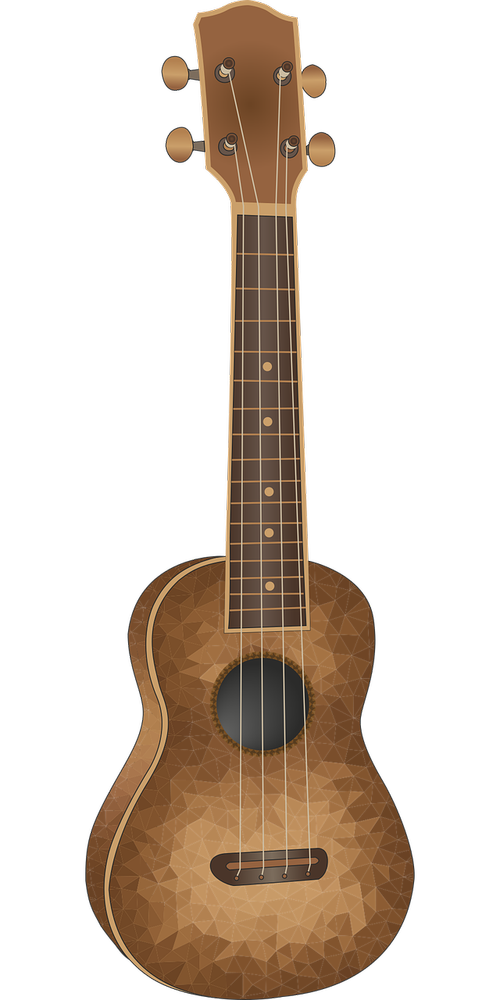 brown  acoustic  instrument