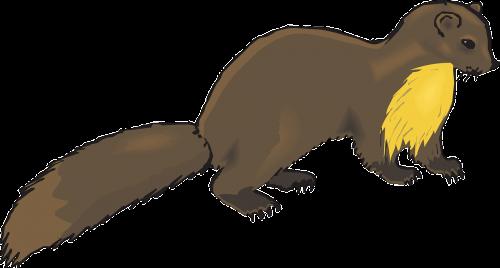 brown animal tail