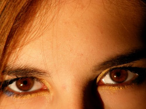 brown brown eyes iris