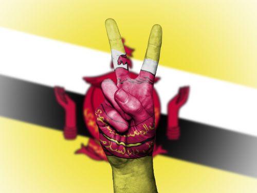 brunei flag peace