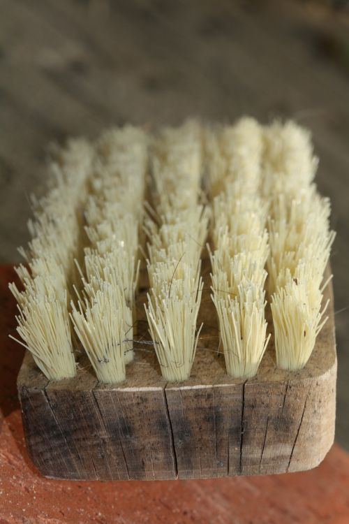 brush bristles clean