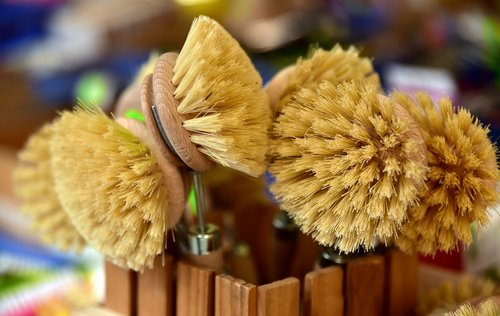 brushes  bristles  cleaning