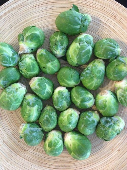 brussel sprouts vegetables brussels sprouts