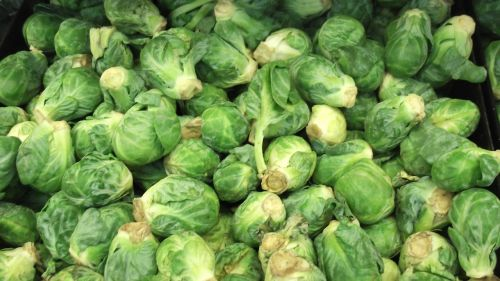 brussels sprout vegetable food