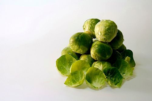 brussels sprouts drop of water brussels sprouts leaves
