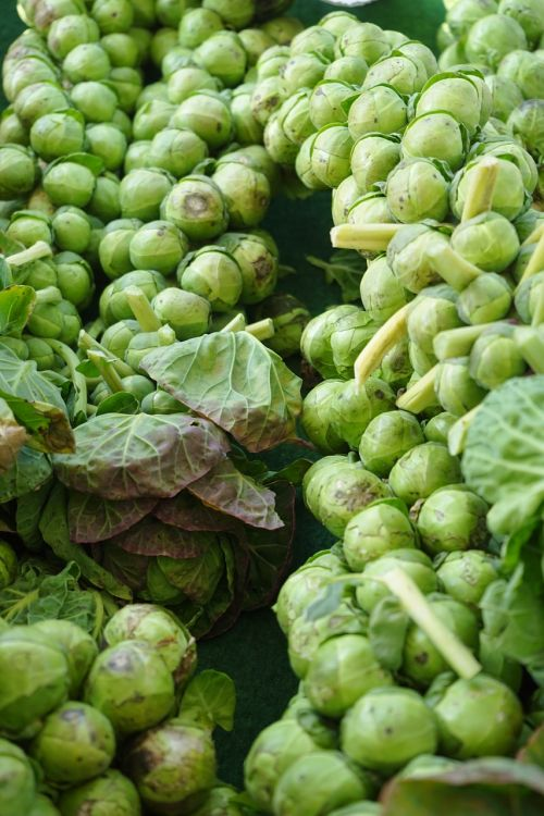 brussels sprouts florets vegetables