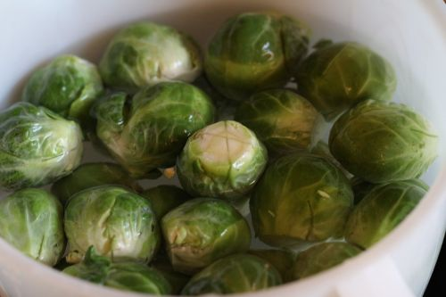 brusselsprouts fresh organic vegtable