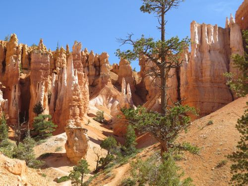 bryce canyon utah red sandstone