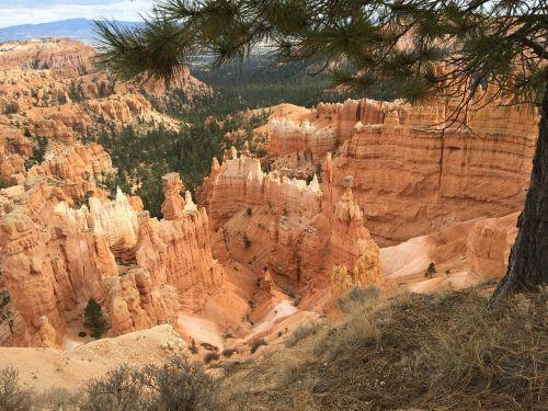 bryce canyon park nature