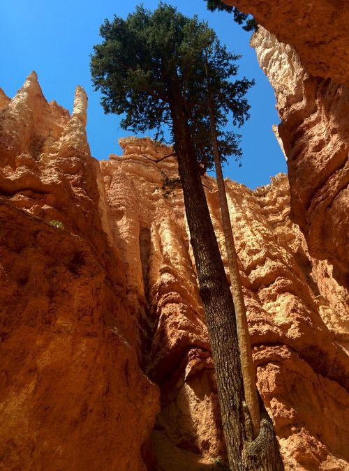 bryce canyon scenic national