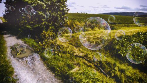 bubbles grass meadow