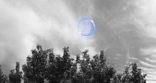 Bubbly Dream