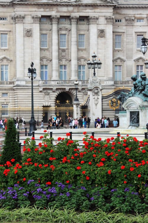 architektūra, Buckingham, rūmai, kapitalas, spalva, spalva, Anglija, gėlė, gėlės, sodas, orientyras, Londonas, paminklas, karalienė, karališkasis, vertikalus, pastatas, namas, Bekingemo rūmai ir gėlės