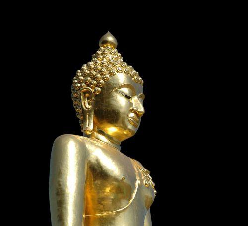 buddah gold statue