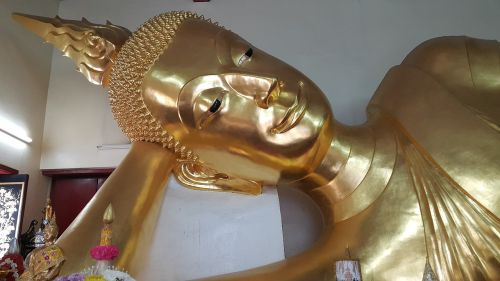 buddha buddha statue gold