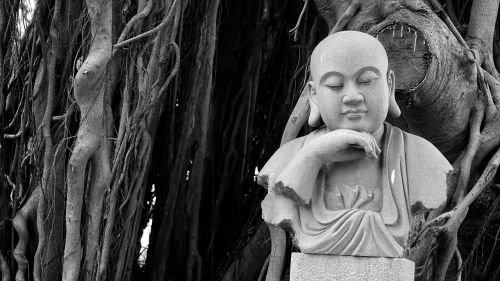 buddha,banyan tree,religion,black and white,god