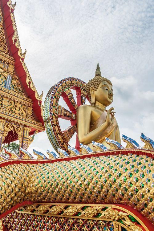 buddha thailand buddhism temple