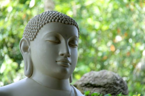 buddha sri lanka mahamevnawa