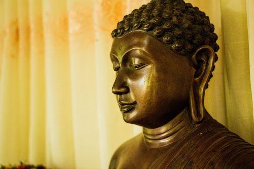 buddha mahamevnawa sri lanka