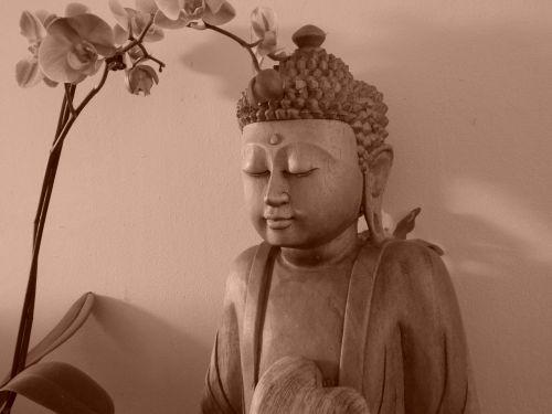 buddha peace tranquility