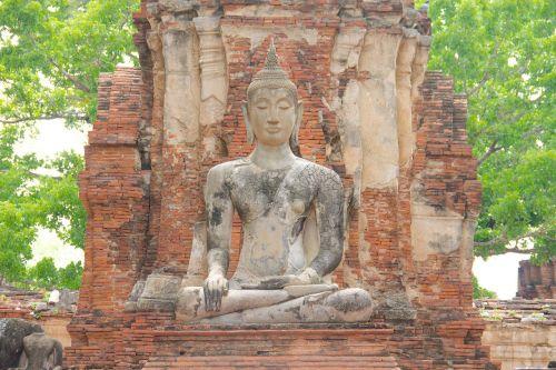 buddha photo blender statue