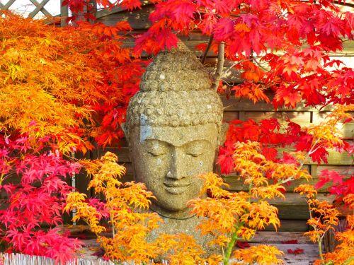 buddha figure statue