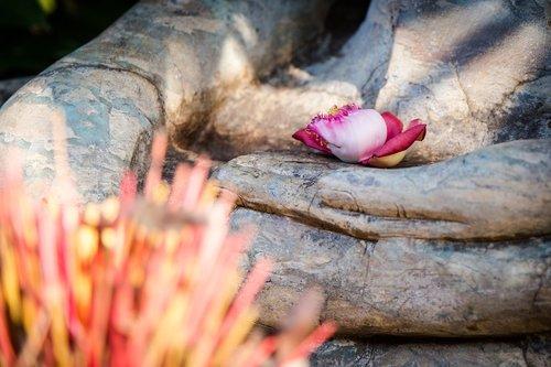 buddha  buddhism  stone figure