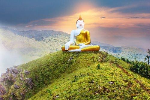 buddha  thai  buddha statue