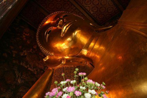 buddha lying buddha reclining buddha