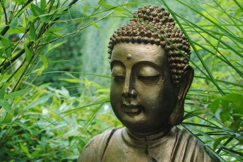 buddha asia statue